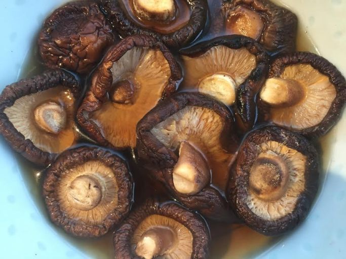 Soak your mushies for at least half an hour in hot water. When you chop them - remove the stems